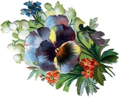 A free Victorian clip art image of a pansy, suitable for decoupage and other crafts. Description from missmary.com. I searched for this on bing.com/images