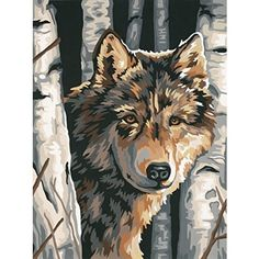 Wolf Among Birches Paint by Number Kit by Paintworks Dimensions