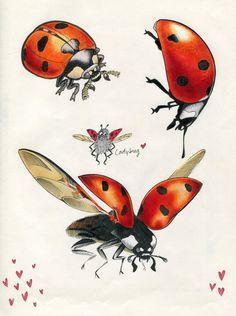 Ladybug Flying Drawing : ladybug, flying, drawing, Http://diysolarpanelsv.com/images/vintage-ladybug-insect-color-clipart-1.jpg, Ladybug, Insect