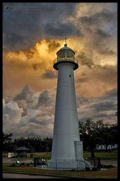 31 Best Jason Taylor Alex North Images Gulf Coast Mississippi