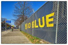 State Street - #goblue #Ann #Arbor, MI