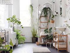 20 Chic And Minimalist Boho Bathroom Design Ideas 20 schicke und minimalistische Boho Badezimmer Design-Ideen Bathroom Plants, Boho Bathroom, Jungle Bathroom, Bathroom Ideas, Ikea Bathroom, Tropical Bathroom, Bathroom Designs, White Bathroom, Eclectic Bathroom