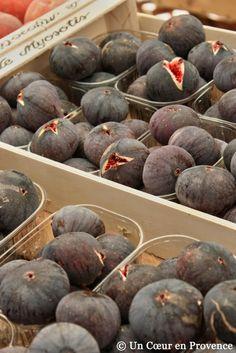 chez nous en Drôme Provençale  www.revechatoyant.com