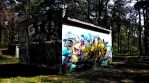 Walking in forest_original  #urban #graffiti #abandon #building #timelapse #photograhy #tag #art #nature #forest #vjloops #vj #visuals
