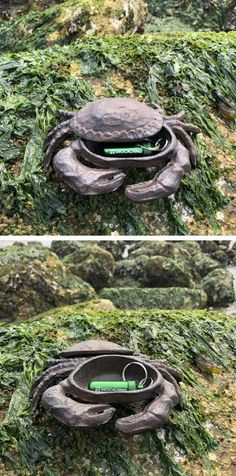 Have you ever wanted to hide a in a crab but couldn't get them to stop moving? Well, this might be a solution for you! Crab and go! Geocaching, Bison, Tube, Twitter, Creative, Outdoor Decor, Shop, Store