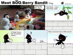 Meet BOO Berry Bandit (BBB): Everyone Has a Little Secret