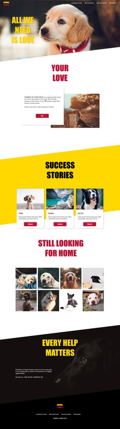 Animal lovers website web design