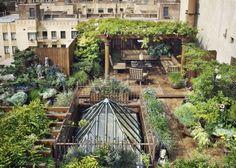 Un toit terrasse en jungle urbaine / urban jungl rooftop
