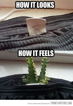 Monday's Meme I Clothes But Not Quite http://clothesbutnotquite.com/mondays-meme/mondays-meme-30/ #meme