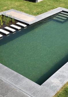 Swimming Pool Pond, Natural Swimming Ponds, Pond Design, Garden Design, Build Your Own Pool, Minimal House Design, Water Garden, Land Scape, Backyard Landscaping