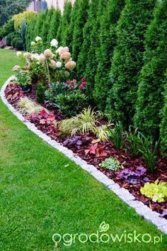 30 Trend Front Yard And Backyard Landscaping Ideas on A Budget - - Garden Yard Ideas, Side Garden, Backyard Garden Design, Garden Edging, Lawn And Garden, Garden Paths, Arborvitae Landscaping, Landscaping Along Fence, Backyard Landscaping