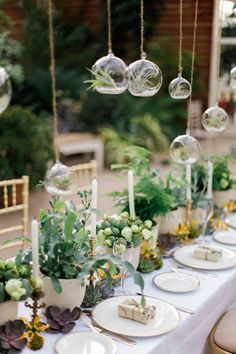 Botanical wedding decor.  For more information on how we could recreate this image visit www.stressfreehire.com or contact info@stressfreehire.com