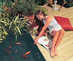 backyard ideas, koi fish pond to feng shui home design
