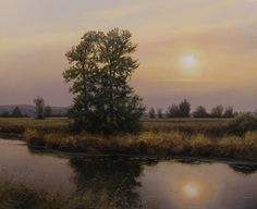 Renato Muccillo Fine Arts Studio - Wetlands at Dusk