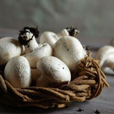 White Button This is the most common variety of mushroom. The culinary choice is endless - from salads to pizza, stir-fries and side dishes - it is the most versatile mushroom of them all. White Button Mushrooms, Chocolate Trifle, South African Recipes, Rice Milk, Okra, Fungi, Side Dishes, Stuffed Mushrooms, Fresh