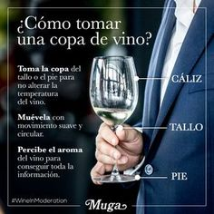 ⚜️ Vinos / Wines... Parece sencillo, pero la forma de beber y sujetar una copa de vino puede tener muchos matices… ¿por dónde la coges tú: cáliz, tallo o pie?