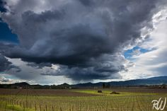 Storm Over Napa Valley, California  Blog Post: Get Over Your First Impressions - http://www.rwongphoto.com/blog/get-over-your-first-impression  #winecountry #napavalley #photoblog