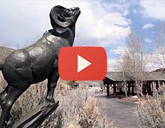 The National Museum of Wildlife Art in Jackson Hole, WY is the premier museum of…