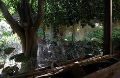 Disfruta de nuestros jardines! #eco #slow #grancanaria #lascalas #garden #fresh