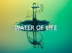 WMSCOG- Elohim God, the source of the water of life.