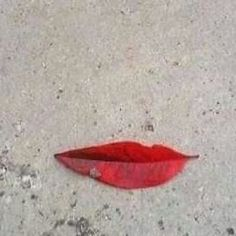 Funny pictures about Perfect Lips. Oh, and cool pics about Perfect Lips. Also, Perfect Lips. Land Art, Poesia Visual, Foto Blog, Perfect Lips, Perfect Smile, Beautiful Smile, Perfect Photo, Beautiful Things, Pics Art