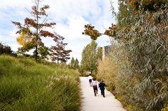 Martin_Luther_King_Park-Atelier_Jacqueline_Osty-12 « Landscape Architecture Works | Landezine
