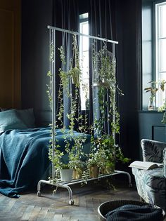 IKEA Plant Hack room divider using a clothing stand. Genius idea for a studio apartment. garden indoor small spaces living rooms IKEA Plant Hacks Your Green Friends Will Love Bedroom Plants Decor, Decor Room, Plant Rooms, Garden Bedroom, Plant Decor, Natural Home Decor, Diy Home Decor, Ikea Plants, Home Decor Ideas