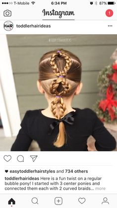 3 double braided ponies