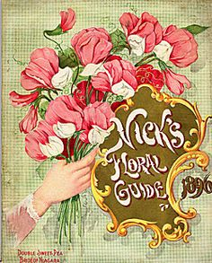 find this pin and more on vintage seed catalog covers