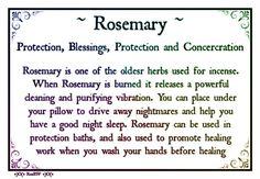 Rosemary Correspondences