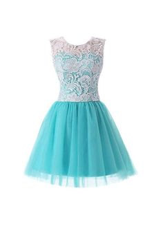 Short Lace Tulle Prom Dresses Homecoming Dresses Party Dresses PG075