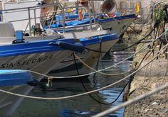 www.tourdelgolfo.com barche pescatori cala marina porto di castellammare del golfo