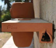 rad compact beekeeping kit for urban gardens -- help to boost devastated bee populations!