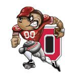 This is the tattoo i got for my 40 th bday !!!! I LOVE THE OHIO STATE BUCKEYES!