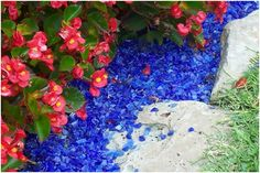 18. ROYAL BLUE GLASS MULCH AROUND HOT TUB WITH ROPE LIGHTING BENEATH. Recycled Glass Mulch, Love the Dark Blue