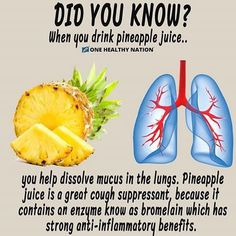 Pineapple Juice helps to dissolve mucus in the lungs and can be a great alternative to cough syrup. – Bromelain and other enzymes found in pineapple, work great for clearing and breaking down mucus, with their anti-inflammatory properties. Nutrition Sportive, Sport Nutrition, Nutrition Education, Health And Nutrition, Health And Wellness, Health Fitness, Nutrition Tips, Fitness Life, Nutrition Month