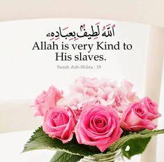 Quran Book, Doa Islam, Muslim Quotes, True Love, Allah, Best Quotes, Peace, Verses, Instagram