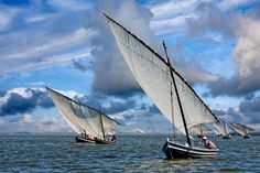 Latin sailing regatta in Valencia lagoon