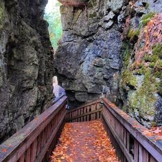 This unreal cliff system near Toronto offers sweeping views of fall Ontario Travel, Toronto Travel, Toronto Tourism, Ontario Camping, Weekend Trips, Day Trips, Places To Travel, Places To See, Canadian Travel