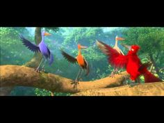 From the movie Rio, the first song. Love all the colors and choreography! Gosh, brilliant.