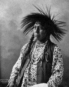 Flathead Chief Ring Necked Crane - Antoine Moise 1898