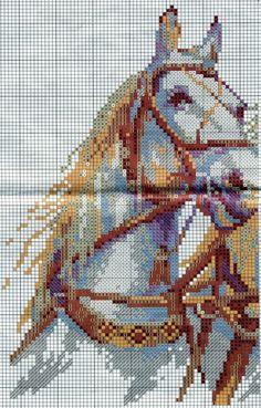 CABALLOS-BLANCOS-2.jpg (800×1254)