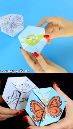 Let's learn about the life cycle of a butterfly with this engaging butterfly life cycle paper toy flextangle. Let's learn about the life cycle of a butterfly with this engaging butterfly life cycle paper toy flextangle. Paper Crafts Origami, Paper Crafts For Kids, Diy Arts And Crafts, Creative Crafts, Diy For Kids, Fun Crafts, Craft With Paper, Preschool Crafts, Origami Toys