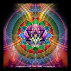 Ray of Love - Mandalas