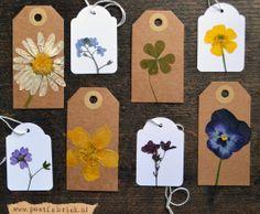 labels dried flowers gedroogde bloemen