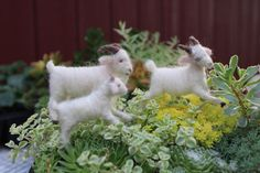 The three billy goats  white needle felted goats von woolinlegends