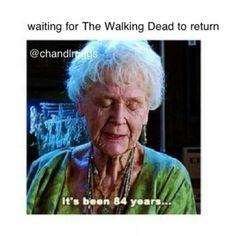 .Waiting for the Walking Dead to return. LMAO. TWD. Season 5.