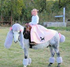 Poor horse!!