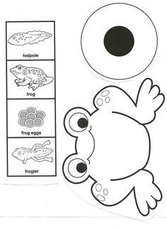 kurbağa kalıp – Okul Öncesi Etkinlik Kaynağınız Your source of preschool activities is waiting for you. You can reach thousands of activities on our site. Frogs Preschool, Preschool Science Activities, Science Crafts, Kindergarten Science, Science For Kids, Science And Nature, Sequencing Activities, Life Cycle Craft, Lifecycle Of A Frog