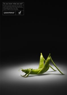 "BBDO Moscow created these interesting advertisements for Greenpeace to educate consumers about genetically modified foods. They made creatures out of vegetables to emphasize the theme of their campaign ""Do you know what you eat?"""